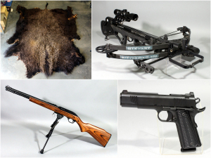 June Firearm Auction