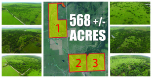 568 Acres +/- Kansas Land Auction - Court Ordered