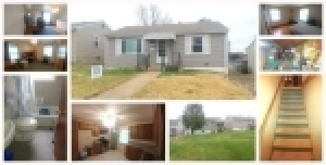 St. Louis Real Estate Auction