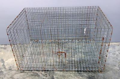 "Wire Animal Crate 30.25""W x 18""H x 20""D"
