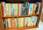 Hardback Book Collection Including Robert Ludlum, Colleen McCullough, Vern Michaels, And More, Contents Of 2 Shelves