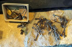 Skeleton Key Collection, Approximate Qty 50