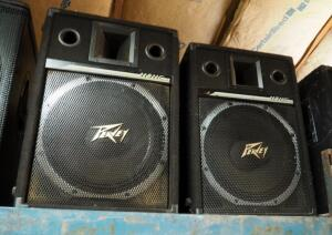 "Peavey Model 115HC II 2 Way Speakers, Qty 2, 25"" x 17"" x 14"""
