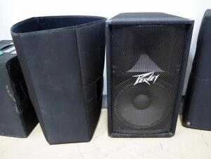 Peavey PA Speaker Model PV115 With Cover