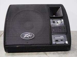 Peavey Floor Monitor Model PV15PM