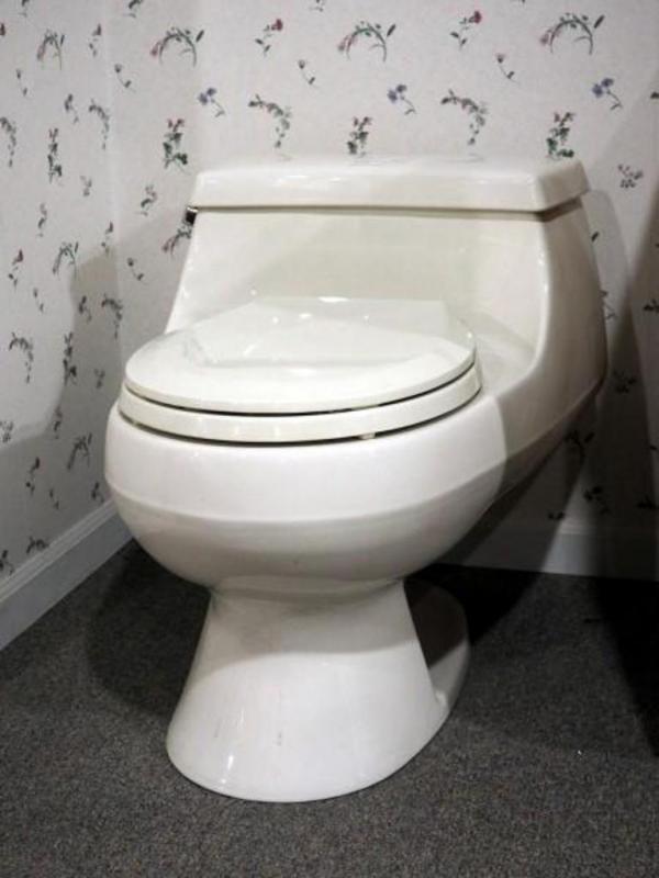 Fabulous Kohler San Raphael Toilet 3467 96 1 6Gps Dailytribune Chair Design For Home Dailytribuneorg