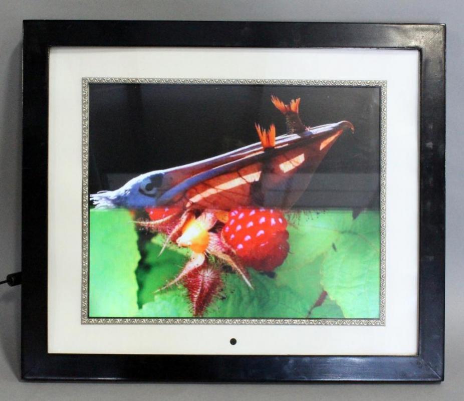 Digital Spectrum Memoryvue Gallery Mv 1700 Plus 17 Inch Digital